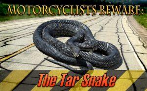 tar-snake-banner