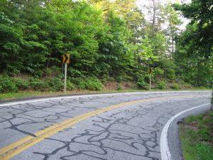 tar-snake-in-curve